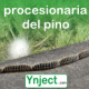 Ynject fertinyect procesionaria