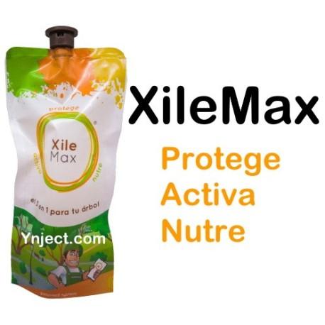XileMax